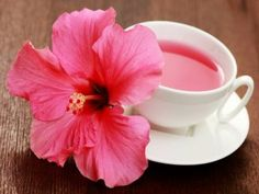 Health benefits of hibiscus are pretty numerous. Hibiscus extracts can help you to solve many health problems. The health benefits of hibiscus are Hibiscus Tea, Hibiscus Flowers, Edible Flowers, Hibiscus Plant, Hibiscus Health Benefits, Coconut Health Benefits, Hibiscus Sabdariffa, Home Remedies For Hair, Lower Blood Pressure