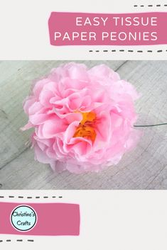 These tissue paper peony flowers are really pretty and so easy to make. This free step by step tutorial with video instructions will show you all you need to know. Make a bouquet for a gift or how about a vase full for your home decor. Great gift idea for Mothers Day and great for kids to get involved in making. Bright Flowers, Different Flowers, Diy Flowers, Tissue Paper Flowers, Paper Flower Backdrop, Paper Bouquet Diy, Paper Lotus, Flower Places, Tissue Paper Crafts