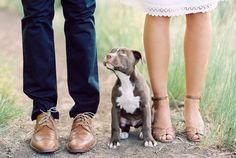 If you're considering bringing your pup to your engagement session (or wedding) just do itttt! From @jzobphoto 's engagement session last summer in #utah @photovisionprints @weddingsparrow by meganrobinsonphoto