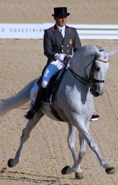 Fuego! FEI Dressage Andalusian