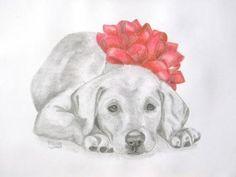 honden tekeningen om na te tekenen - Google zoeken