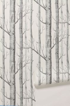 Woods Wallpaper - Anthropologie.com