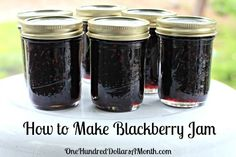 Canning 101 - How to Make Blackberry Jam - jammin - Homemade Jam Canning Tips, Home Canning, Canning Recipes, Canning Labels, Blackberry Jam Recipes, Seedless Blackberry Jam, Blackberry Freezer Jam, Homemade Blackberry Jam, Blueberry Jam