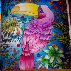 #animorphia #animorphiacoloringbook #animorphiacolouringbook #kerbyrosanes #adultcoloringbook #adultcolouringbook #adultcoloring #adultcolouring