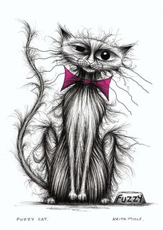 Bad hair day cat - Keith Mills - This is how i feel some mornings...lol
