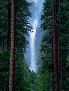 Natures Picture Frame - Lower Yosemite Falls - California - USA
