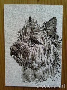Ansichtkaart Cairn terrier www.selena-art.nl