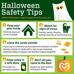 Keep Halloween as a scary holiday for you. Not your pets.
