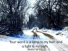 Psalm 119:105: Your Word is a Lamp to My Feet, and a Light to my Path