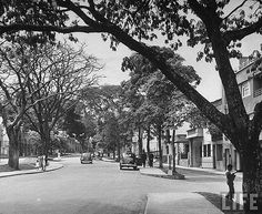 View of upper class homes along La Playa Avenue. Life Magazine, Sidewalk, Homes, Outdoor, Ancestry, Marketing, Medellin Colombia, Old Photography, Antique Photos