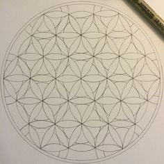 A variation on the Flower of Life. Going to color it with watercolor pencils, although, not sure on the color combos. #mandala #mandalas #art #artwork #zen #mediation #draw #drawing #doodle #sketch #WIP #floweroflife #sacredgeometry