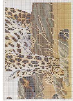 Leopard, 3/4