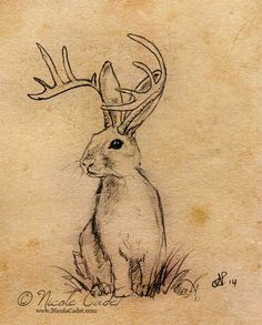 jackalope tattoo - Google Search