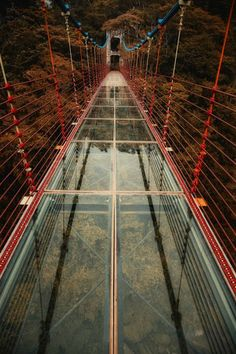 The glass bridge by Hanson Mao(毛延延) Places To Travel, Places To See, Glass Walkway, Scary Bridges, Love Bridge, Pedestrian Bridge, Suspension Bridge, China Travel, Amazing Destinations