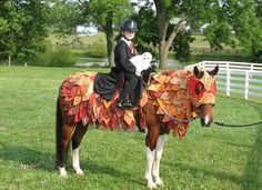 CKRH Rocket Boy as Hippogriff with Harry Potter. Horse costume by Shirley Gentry Horse Halloween Ideas, Horse Halloween Costumes, Fall Halloween, Creative Costumes, Cool Costumes, Costume Ideas, Horse Fancy Dress, Costume Contest, Horse Training