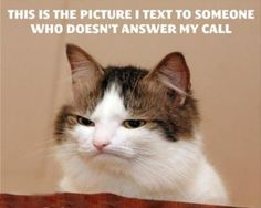 Not really. I always text. This is the expression of my face when someone calls.