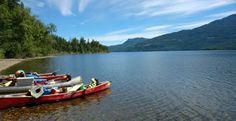 36 years of whitewater rafting adventures in British Columbia. From scenic floats to thrilling whitewater, accented by the amazing scenery of Wells Gray Park. Alpine Meadow, Whitewater Rafting, New Brunswick, Once In A Lifetime, Family Adventure, Wells, British Columbia, Tourism, Scenery