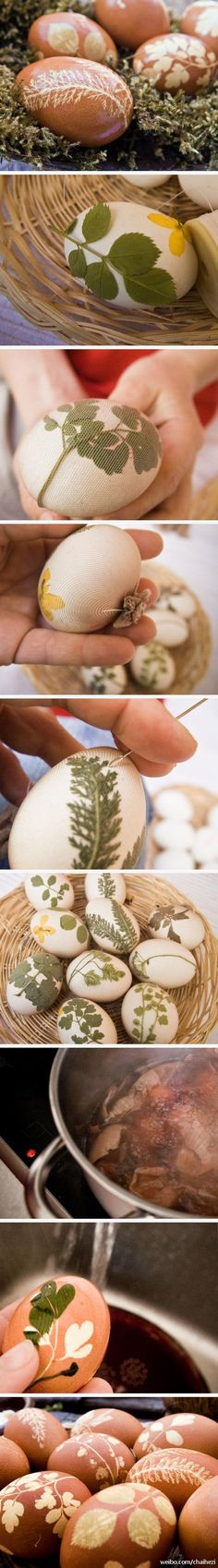 Natural dyed Easter eggs with onion skins. Place leaves and flowers around eggs, wrap in old panty hose and tie off. Use a needle to separate leaves and petals for better defined outlines. Boil in a pot of onion skins and voila!