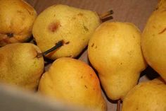 Preserving Summer's Bounty: Canning Pears
