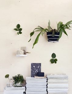 Luhta Home Garden - Silmu All About Plants, Interior Plants, Interior Design, Wedding Flower Inspiration, Green Life, Marimekko, Green Plants, Plant Decor, Indoor Plants