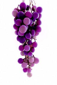 Purple | Porpora | Pourpre | Morado | Lilla | 紫 | Roxo | Colour | Texture | Pattern | Style | Form | grapes