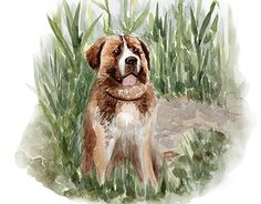 """Check out new work on my @Behance portfolio: """"My dog"""" http://be.net/gallery/33399079/My-dog"""