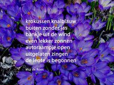 De lente is begonnen door Elsz de Roos - krokussen knalblauw / buiten zonder jas / bankje uit de wind / even lekker zonnen / autoraampje open / uitgelaten zingen / de lente is begonnen
