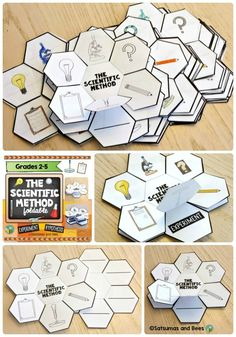 This is a terrific resource that your students will LOVE ! This scientific method foldable (petal book) will help your students memorize the steps of the scientific method. This resource  is great for students from grades 2-5. -with whole group, small groups or individual configurations.
