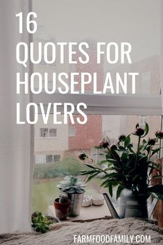 Gardening For Beginners 16 Quotes for Houseplant Lovers (Indoor Gardening) - This is a collection of quips and quotes for houseplant lovers. Post them near your desk or garden workspace for instant inspiration and entertainment. Backyard Garden Landscape, Garden Beds, Potager Garden, Herb Garden, Gardening For Beginners, Gardening Tips, Organic Gardening, Indoor Gardening, Sustainable Gardening