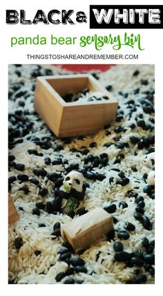 OTHER: Black And White Panda Bear Sensory Bin for Preschool. I would love to see how they manipulate the blocks in the rice and beans because its not a solid surface. Panda Activities, Sensory Activities, Infant Activities, Color Activities, Sensory Tubs, Sensory Boxes, Sensory Play, Toddler Preschool, Preschool Crafts