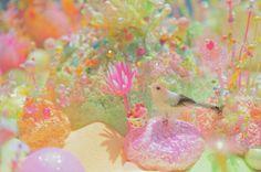 """""""Utakata Tayatau - The blinking of an eye"""" , Pip & Pop, Spiral, Aoyama , Tokyo ,Japan, 2012, July. photo / GABOMI"""