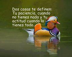 Frases, pensamientos, reflexiones y mucho más: Dos cosas te definen ....