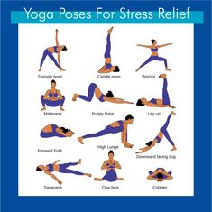 Feeling stressed? What kind of a question is that? Of course you are. Everyone is dealing with some sort of stress in their life. Even more reason to practice yoga! Here are a few beginner poses to help manage your stress levels.   Join us for After Work Yoga or Restorative Yoga to really start feeling calm, relaxed, and rejuvenated!   #betterlivingyoga #40isthenew30 Puppy Pose, Forward Fold, Cow Face, Practice Yoga, Class Schedule, Restorative Yoga, Feeling Stressed, Get Directions, Stress Relief