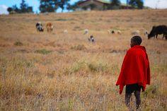 Maasai Boy_Kitengela, Kenya by haskinsjeff, via Flickr Kenya, Gallery, Boys, Pictures, Fashion, Baby Boys, Photos, Moda, Roof Rack