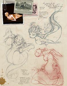 Salba Combé - Character Design Page