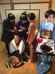 Geiko & Maiko — Today was Maiko Satoharu's (Kawahisa Okiya of...