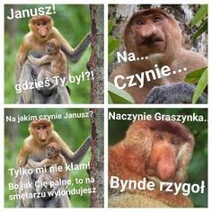 Polish Memes, Photos For Facebook, Cute Pokemon Wallpaper, Smile Everyday, Best Memes, Wattpad, Lol, Funny, Volkswagen