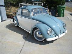 Retro Perfection!    #vw #volkswagen #beetle #bug