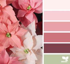 {papered poinsettia} image via: @apetalunfolds www.design-seeds.com Yarn Color Combinations, Colour Schemes, Color Blending, Color Mixing, Paint Color Chart, Colour Pallette, Color Balance, Design Seeds, Colour Board