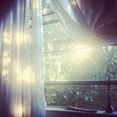 the light through my window.