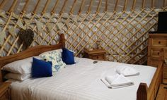 Bluebell Yurt | Country View Cottages in Cornwall