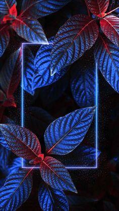 Midnight-Highway-Artistic-iPhone-Wallpaper - iPhone Wallpapers : iPhone Wallpapers   Neon light wallpaper, Iphone wallpaper lights, Nature iphone wallpaper