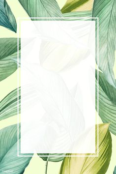 Blank rectangle tropical leaf frame template vector | premium image by rawpixel.com