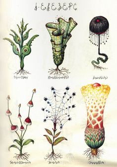 Luigi Serafini Codex Seraphinianus This book is further out than far out. It's an illustrated encyclopedia of an imaginary world, created by the Italian artist, architect and industrial designer Luigi. Codex Seraphinianus, Impressions Botaniques, Illustration Botanique, Nature Illustration, Italian Artist, Art Plastique, Botanical Prints, Vintage Prints, Luigi