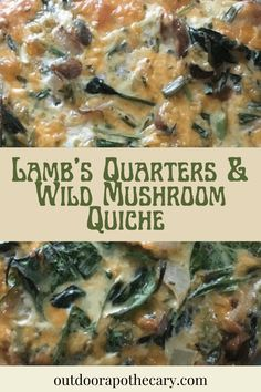 This crustless quiche made with lamb's quarters and wild foraged mushrooms is going to rock your world!Continue Reading