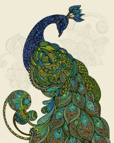 Intricate Peacock drawing