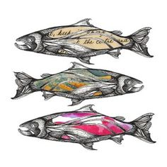 SalmonStories_print_WHITE