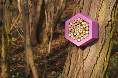 Bee hotel, Insect house, Bumblebee home, Mason bee house, Hotel Lavender by DILNA HAMMER www.dilnahammer.cz