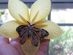 Large Kusudama Flower With Butterfly on by GracelinePaperStudio, $4.10