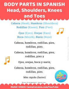 Spanish Body Parts: Head, Shoulders, Knees and Toes in Spanish - LYRICS
